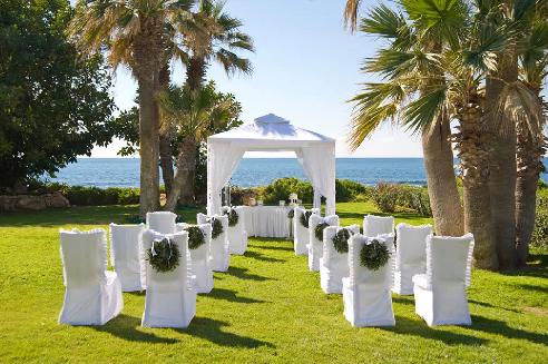 weddingcy3
